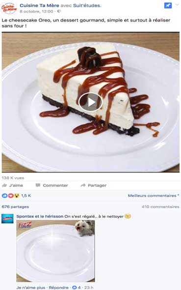 BUZZ MARKETING - La campagne publicitaire de Spontex sur Facebook
