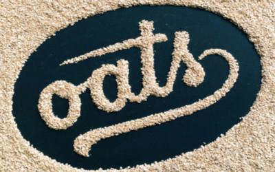 60 typos design réalisées à partir d'aliments par Becca Clason !